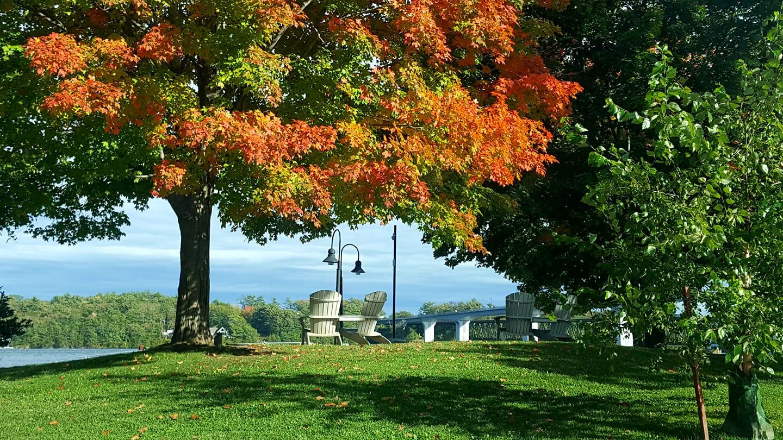 Autumn in Bath Maine
